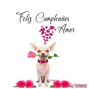 imágenes con rosas de feliz cumpleaños