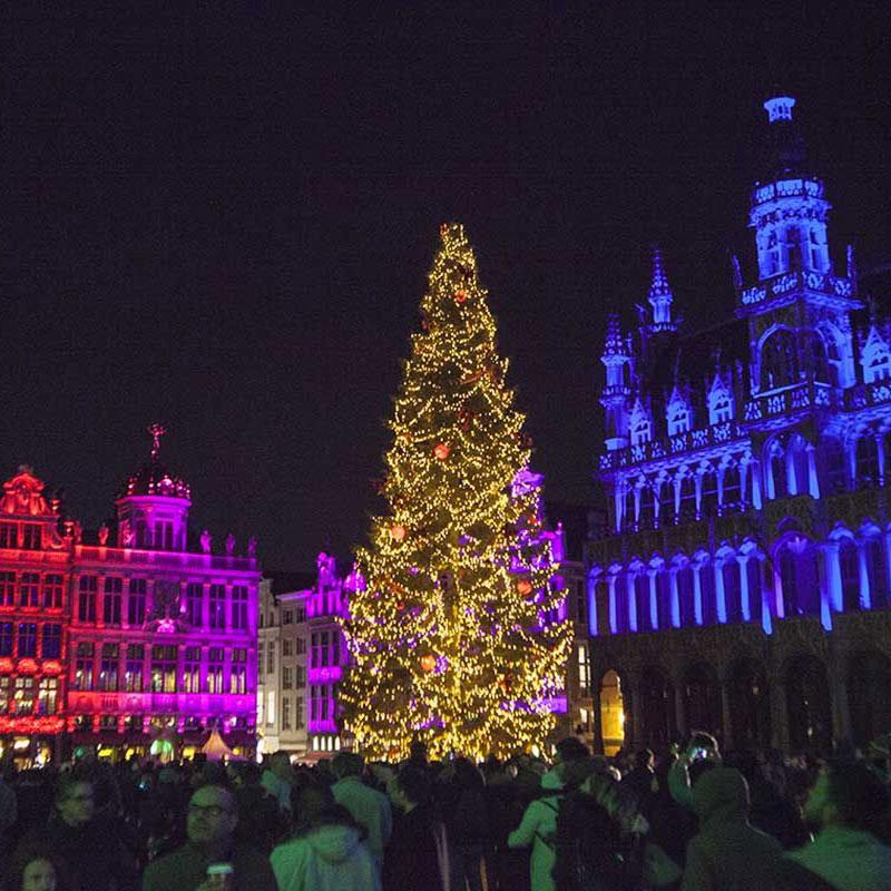 fotos de navidad de bruselas