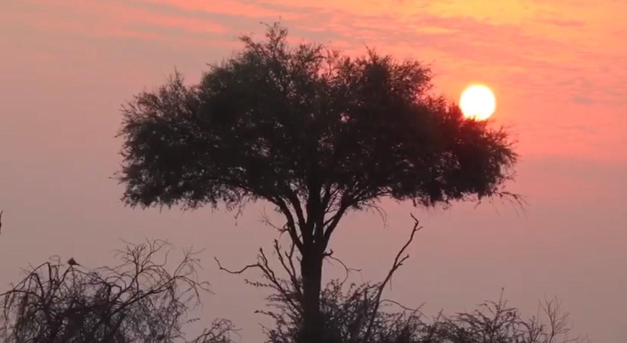 navidad en botswana
